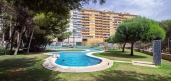 Neuf Direct Promoteurs - Appartement - Orihuela Costa - Campoamor